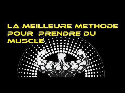Le muscle groudino-kljutchitchno-mamelonné la place de la fixation