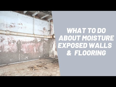 What To Do About Moisture Exposed Walls and Flooring