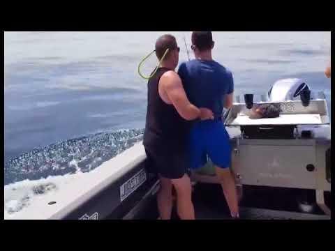 Marlin on standup gear…