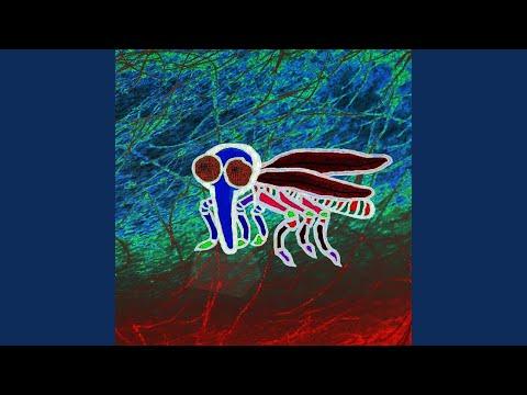 Trichinella idegrendszer
