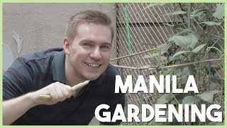 How To Grow Vegetables In Your MANILA CONDO (URBAN GARDENING TIPS With Chris Urbano)
