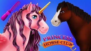 Fun Animals Pony Care - Girls Princess Horse Club Clean Up Pet Makeover Kids App