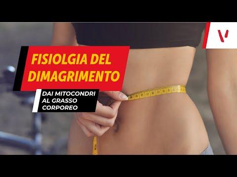 Hca perdere peso