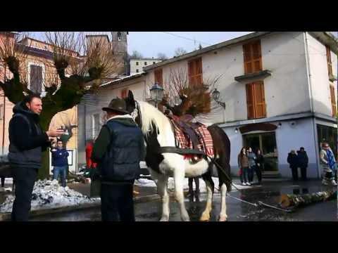 Comprare lattivatore di cavallo in Tomsk