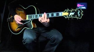 Guitar-View.com Peerless Monarch