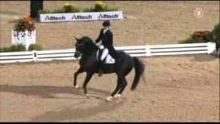 Totilas & Edward Gal WEG Grand Prix Freestyle - YouTube