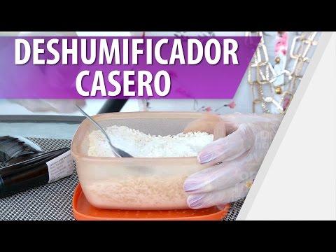 Cómo Hacer un Deshumificador Casero / Evita Humedades en Casa