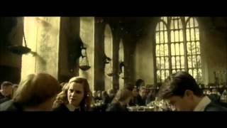Семейство Уизли, Best Ron and Hermione Scenes 1-7 Part 2