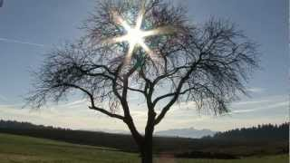 preview picture of video 'Ein sonniger Herbsttag (Steinsee)'