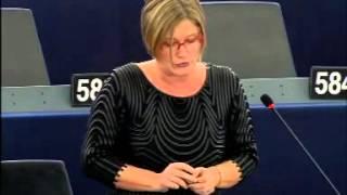 Gál Kinga felszólalása a migrációs vitában – Strasbourg, 2016.02.02