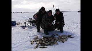 Рыбалка в северо-казахстанской области на карася