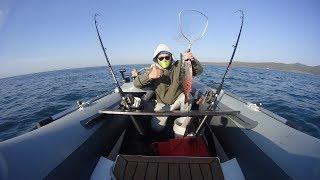 Снасти для рыбалки троллингом на море