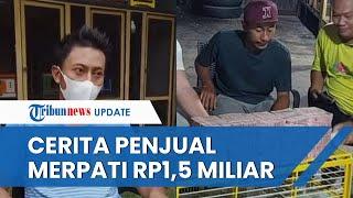 Viral Video Burung Merpati Terjual Rp1,5 Miliar ke Seorang Bos Asal Jakarta, Ini Cerita Pemiliknya
