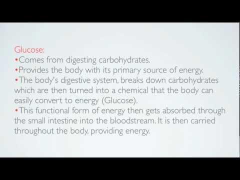 Körper reguliert den Blutzucker