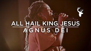 All Hail King Jesus + Agnus Dei - Rheva Henry   Moment