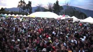 Jamming Festival 2013 / Especial