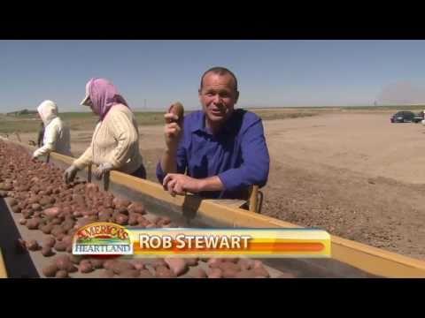 , title : 'Idaho Potato Harvest
