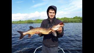 База рыболовная на озере ильмень
