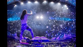 Steve Aoki Live At Tomorrowland 2017