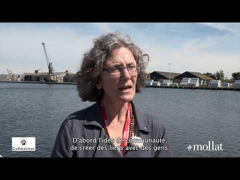Vidéo de Jean Hegland