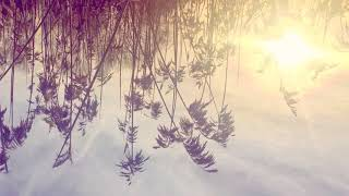 """Video thumbnail of """"Ane Brun - Into My Arms"""""""
