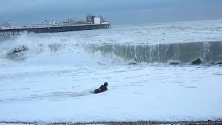 Dog Rescue at Brighton Seafront