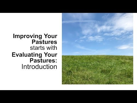 Horse Pasture Evaluation: The First Step for Improvement