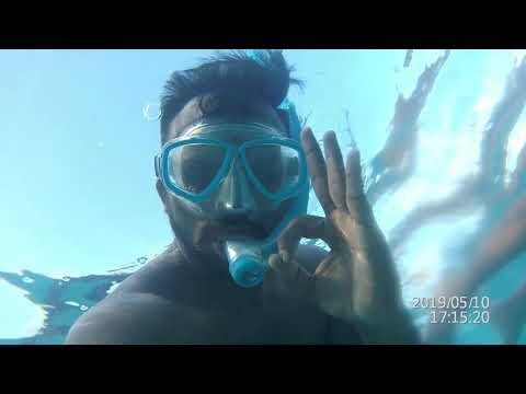 Maldives May 2019 - Sun Island Resort ad Spa - Snorkeling and More