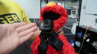 ATTACHING GOPRO TO ELMO AT 3 AM!! *LIVE FOOTAGE MOVING*