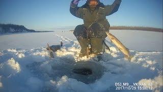 Ловим щуку - вечерний клев окуня! Якутия Yakutia
