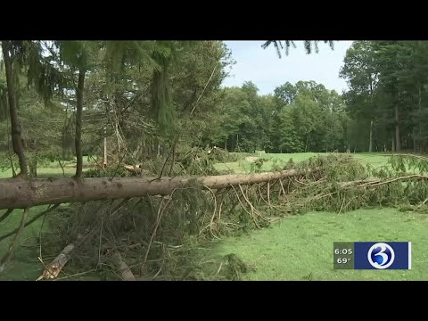 VIDEO: National Weather Service out surverying damage in Tolland County
