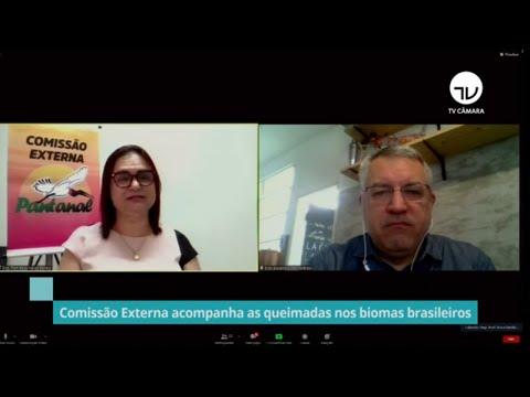 Comissão debate impacto das queimadas na saúde dos animais e das pessoas - 14/10/20