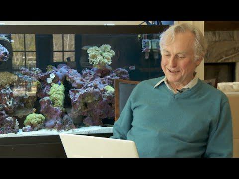 Milostné dopisy Richardu Dawkinsovi