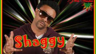 Shaggy  Hope