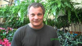preview picture of video 'gardentoronto.ca  July 22, 2011  Ed Grzybek of Walmart Canada'