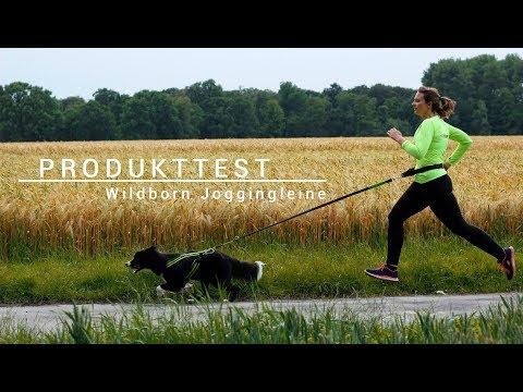 ► PRODUKTTEST ◀︎  Wildborn Joggingleine | Joggen mit Hund