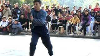 preview picture of video 'Бай Мэй мастер Чхоу Дэ Цзи - www.taishe.ru - Bak Mei'