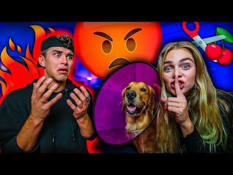 MY ASSISTANT REMOVED MY DOGS PRIVATES PRANK!! *I CRIED*