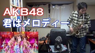 Kimi wa Melody (AKB48) Alto Saxophone Cover