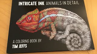Adult Coloring Book Review