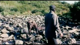 Grizzly Man Movie