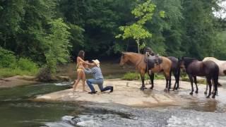 The Cowboy Way Proposal