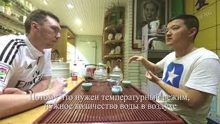 Про китайский чай с китайцем-2. Про шу и шен пуэр, про старые пуэры.