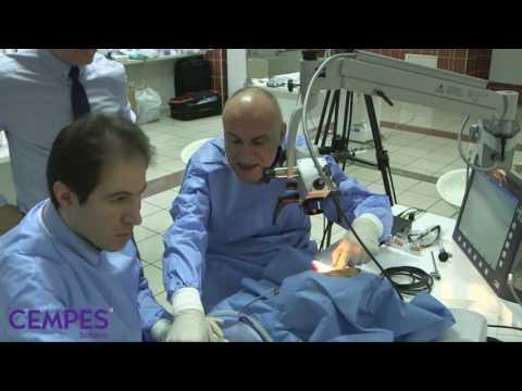 05 Prof Dr BULENT SATAR
