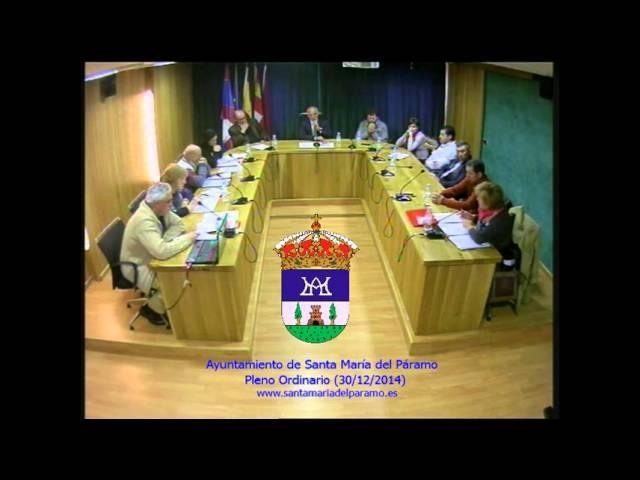 Pleno Ordinario (30 de diciembre de 2014)
