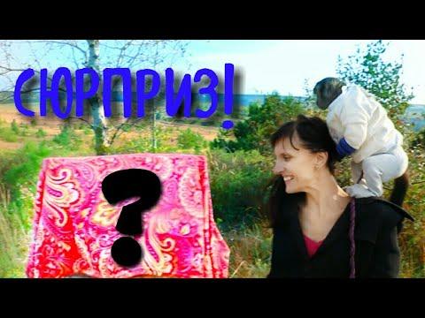 2018.09.29 Обезьяна капуцин Масяня. Подарок - сюрприз ко дню рождения.