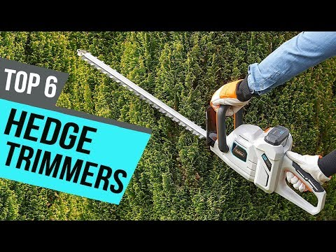 6 Best Hedge Trimmers 2019 Reviews