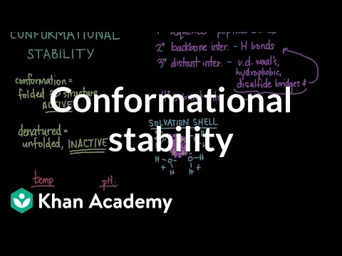 Conformational stability: Protein folding and denaturation