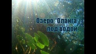 """Озеро """"Оланга"""", подводные съёмки"""