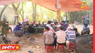 An ninh 24h | Tin tức Việt Nam 24h hôm nay | Tin nóng an ninh mới nhất ngày 08/02/2019 | ANTV